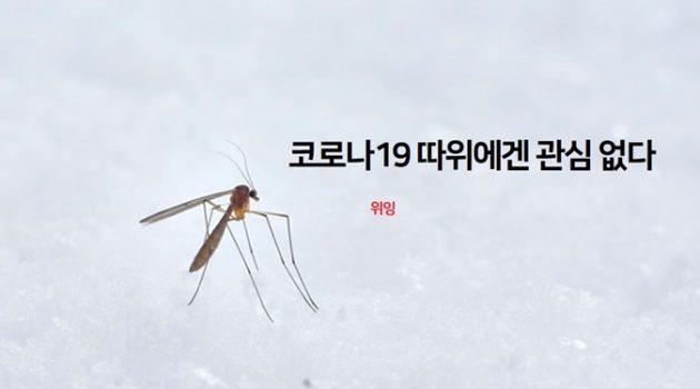 코로나19는 모기 체내에서 복제되거나 모기에게 감염되지 않습니다