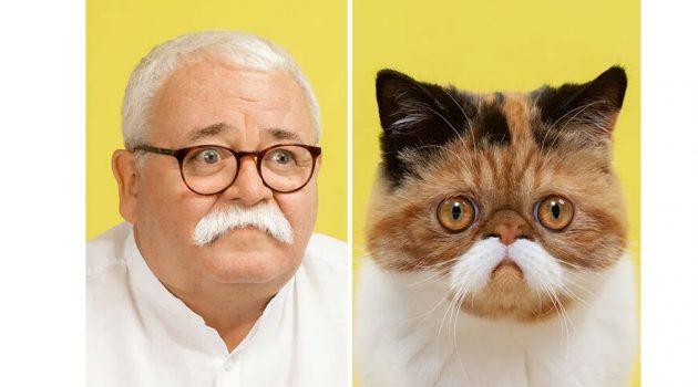고양이와 주인, 진짜 똑같이 생겼잖아?