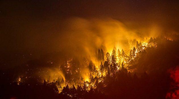 기후변화 시대 산불의 무서운 진화, 대응책은?